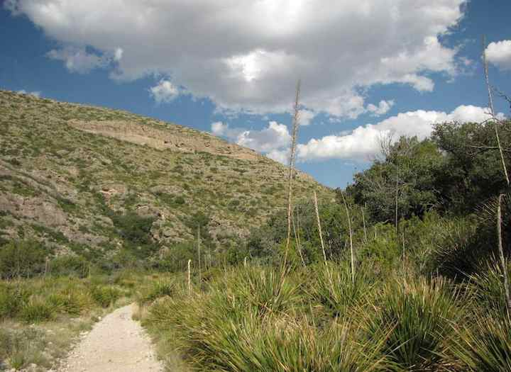 photo on McKittrick Canyon trail in Texas